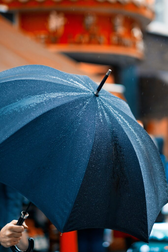 MN Umbrella Insurance